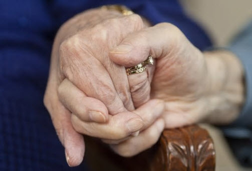 a pair of hands holding