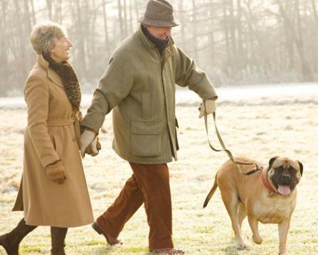 senior couple walking a dog